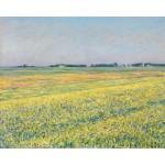 Campos amarillos, Caillebotte, Algomasquearte