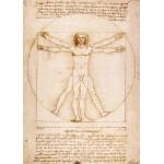 El Hombre de Vitruvio, Da Vinci, Algomasquearte