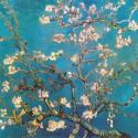 Almendro en flor, Van Gogh