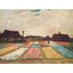 Van Gogh Campo de tulipanes Algomasquearte