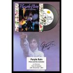 Disco Prince Purple Rain algomasquearte